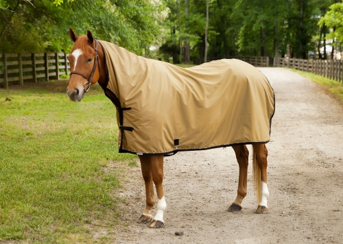 RSE Rain Sheet with Extended Neck